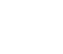BGM-globe-arrow-white